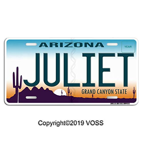 Voss Collectables Arizona Personalized Name Aluminum Car, Truck, SUV, Van, Display Vanity License Plate Tag, Juliet