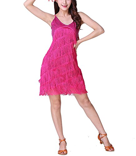 Whitewed Tassel Sequin Speakeasy 1920S Theme Vintage Party Clothing Dress Pink ()