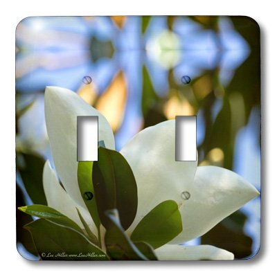 (lsp_30303_2 Lee Hiller Photography Hot Springs National Park Flowers - Magnolia in a Stained glass Sky - Light Switch Covers - double toggle switch )