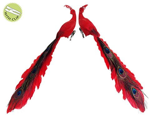allstate-regal-peacock-red-closed-tail-bird-clip-on-christmas-ornaments-set-of-2-15
