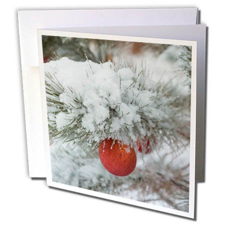 Snowfall Cards Christmas (3dRose Danita Delimont - Holiday - USA, Colorado. Fresh snowfall on tree and Christmas ornaments. - 1 Greeting Card with envelope (gc_278767_5))