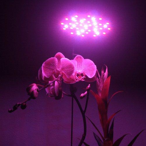 Ledwholesalers 90 Watt High Power Full Spectrum LED Grow Light All Red,2520RD