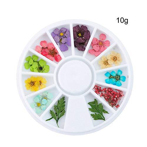 Glitter Gems 3D Nail Art Rhinestones Studs Acrylic Tips Decoration DIY Manicure (pattern - Real Dried Flower)