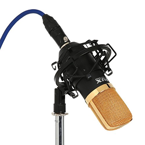 LyxPro LDC-20 Large Diaphragm Cardioid Condenser Studio Microphone, Shockmount, Foam Windscreen & Case