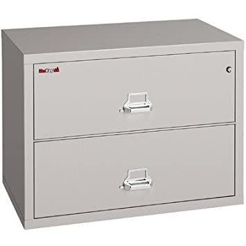 Captivating Fireproof 2 Drawer Lateral File Finish: Platinum, Lock: Key Lock