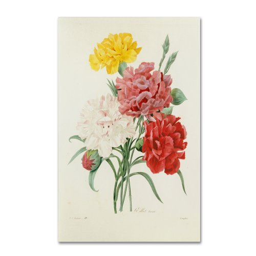 Carnations from Choix Artwork by Joseph Redoute, 3 Canvas Wall