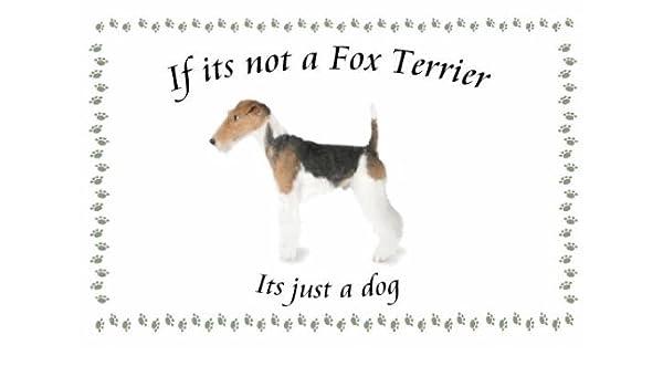 Fox Terrier - perro flashsellerz Llaveros - si no es: Amazon ...