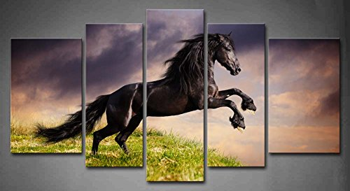 Amazon.com: 5 Panel Wall Art Black Friesian Running Horse Gallop On The  Field On Sunset Grass Painting The Picture Print On Canvas Animal Pictures  For Home ...