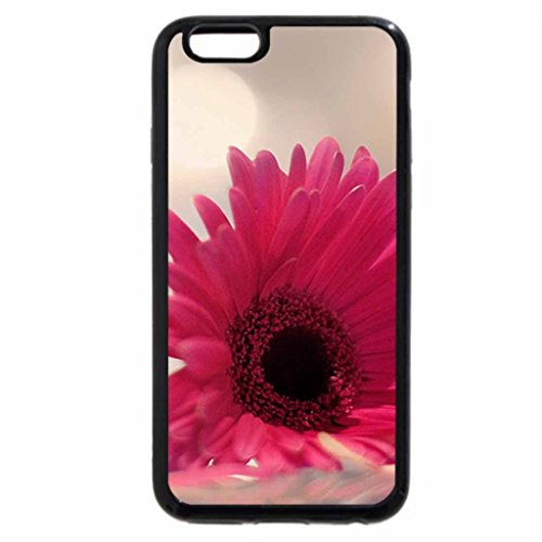 iPhone 6S / iPhone 6 Case (Black) So Fragile