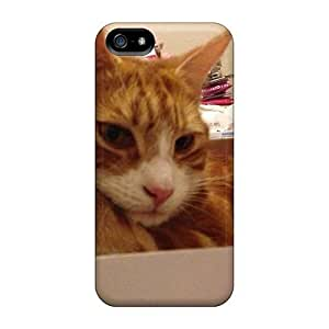 StarFisher Design High Quality Tigger The Cat Cover Case With Excellent Style For Iphone 5/5s
