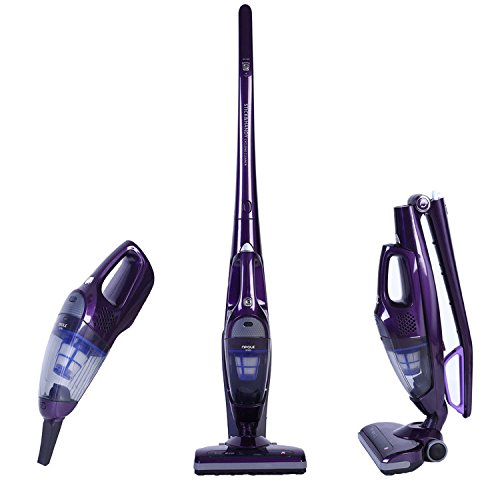 Npole 2in1 Upright Cleaner