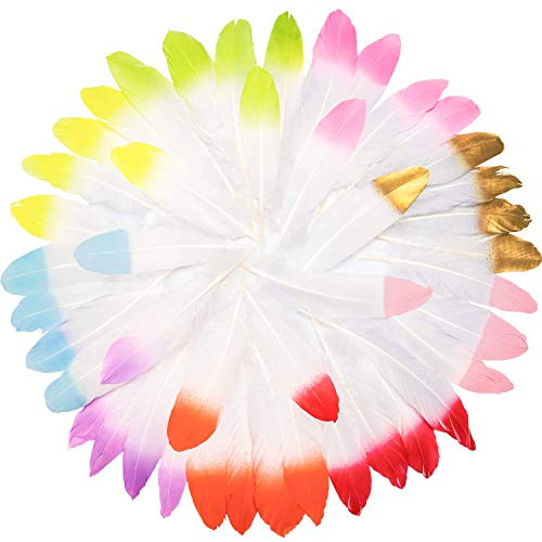 UNEEDE 45 Pcs Decor Feather Natural Colorful Feathers for Art Craft 9 Color Feather Accessories for DIY Craft, Party, Wedding, Dream Catcher, Christmas Home Party - Glitter Boa Feather