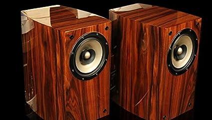 GOWE Full frecuencia sonido HIFI amplificador de válvulas – Altavoces de estantería realmente