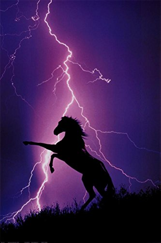 Lightning and Silhouette of Horse Poster 24 x 36in