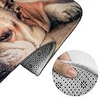 DING English Bulldog Dog Soft Comfort Flannel Bathroom Mats Non-Slip Absorbent Toilet Seat Cover Bath Mat Lid Cover,3pcs/Set Rugs 10