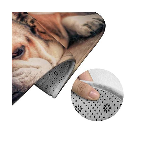 DING English Bulldog Dog Soft Comfort Flannel Bathroom Mats Non-Slip Absorbent Toilet Seat Cover Bath Mat Lid Cover,3pcs/Set Rugs 4