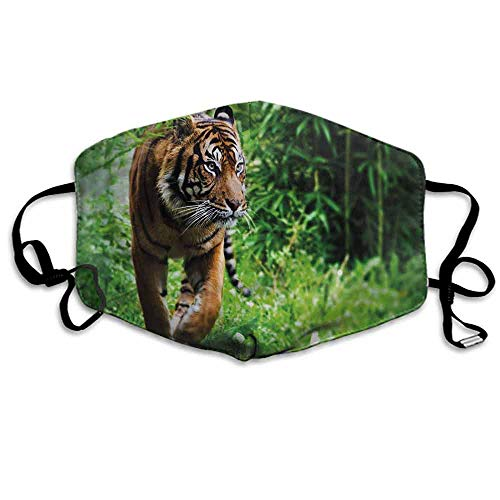 Tiger Dust Mouth Mask Siberian Wild Cat Habitat for Men and Women W4