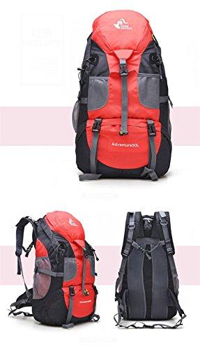 Deporte Bolsa de mochilas de senderismo 50L Capacidad grande de deportes al aire libre del bolso del alpinismo del camping Mochilas de viaje de los hombres de las mujeres , green Red