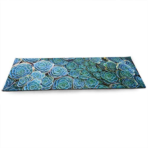 Hhill Swater Assortment of Succulents Yoga Mat Non Slip Exercise Mat, for All Types of Yoga, Pilates & Floor Exercises (71
