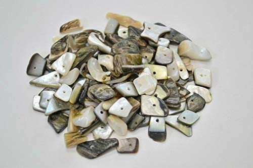 - JumpingLight 100 PCS Black Lip Mother of Pearl Cut Shell Charms Beads #T-243 Beach Wedding Nautical Decor Crafts - Beach Nautical
