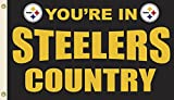 NFL Pittsburgh Steelers Flag with Grommets 60 x 36in For Sale