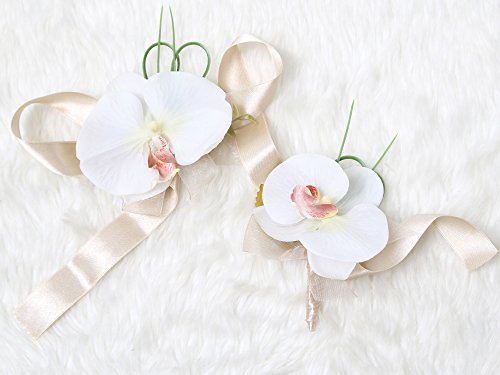 Tropical Wedding Prom Wrist Corsage Phalaenopsis Orchids and Boutonniere Set (Beige (Phalaenopsis Corsage)