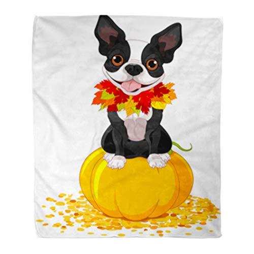 Golee Throw Blanket Dog Boston Terrier Sits on Pumpkin Halloween Cartoon Costume Animals 50x60 Inches Warm Fuzzy Soft Blanket for Bed Sofa ()