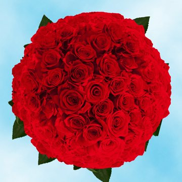 GlobalRose 200 Fresh Cut Dark Red Roses - Long Stem Roses - Fresh Flowers Wholesale Express Delivery