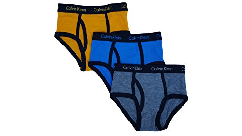 Calvin Klein Little Boys' Assorted 3 Pack Briefs