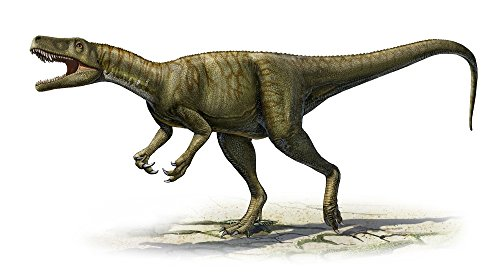 Posterazzi Herrerasaurus ischigualastensis a prehistoric era dinosaur from the Triassic period Poster Print (38 x 20) (Dinosaurs Triassic Period)