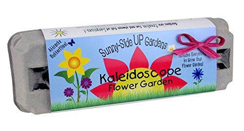 Backyard Safari Company Sunny-Side Up Gardens, Kaleidoscope Flower Garden