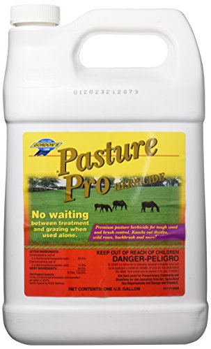 GORDON 8111072 1 gallon Pasture Herbicide
