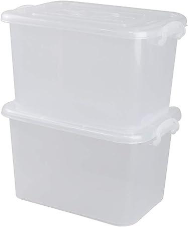 Bblie Caja de Almacenamiento de Plástico, Cajas con Tapadera Transparente, Paquete de 2 (Grande): Amazon.es: Hogar
