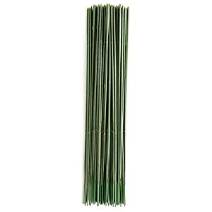 YOTHG 100 x Green Flower Sticks Artificial Flowers Bouquet Plant Support Stick Plastic Flower Rod Gardening Stem Wire Floral Wire for Tulip Bridal Wedding Bouquet Party Floral Decor(25CM) 99