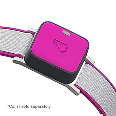Whistle 100-04203-00 GO Explore/The Ultimate Health + Location Tracker for Pets/Magenta