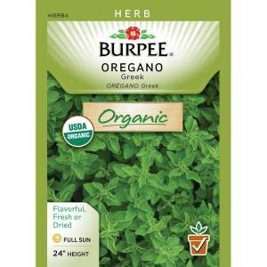 Burpee Oregano Greek Organic