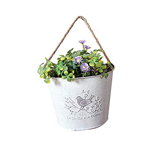 French Planter - Watering Honey French Country Rustic White Shabby Chic Mini Metal Wall Hanging Planters