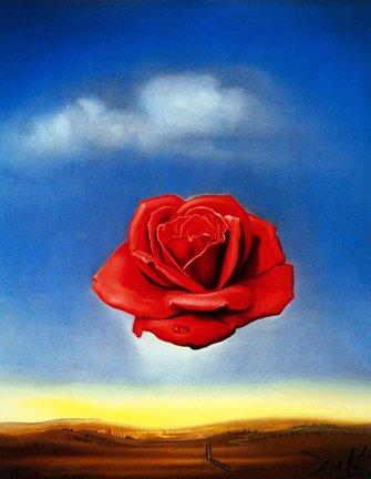 Salvador Dalí - Meditative Rose Print 14 x 11