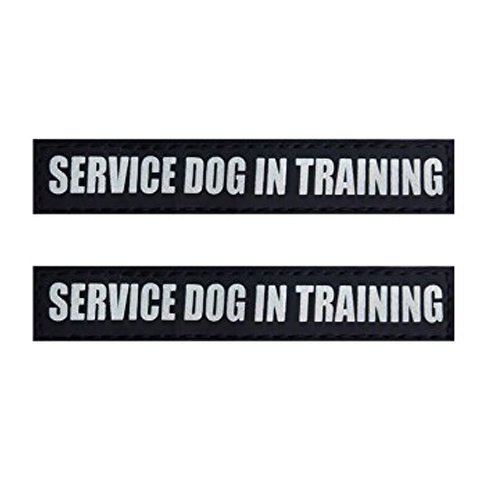 Fairwin Dog Patches, Reflective and Removable Tags for Vests and Harnesses,SERVICE DOG IN TRAINING,Small 4.5
