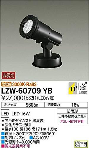 DAIKO LEDアウトドアスポットライト (LED内蔵) 電球色 3000K LZW60709YB   B07K2T9Y9X