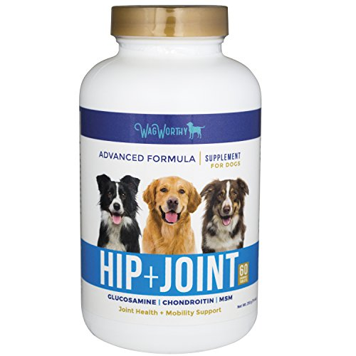 41NAIXpJAfL - WagWorthy Advanced Hip and Joint Supplement for dogs with Chondroitin, MSM and Glucosamine for Dogs by Naturals, Improves Mobility, Arthritis Pain Relief for Dogs, 60 Chewable Tablets, Made in USA