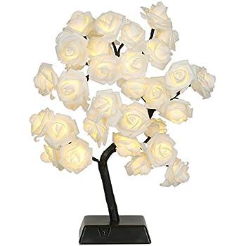 Amazon Com Bolylight Led Table Lamp Adjustable Rose