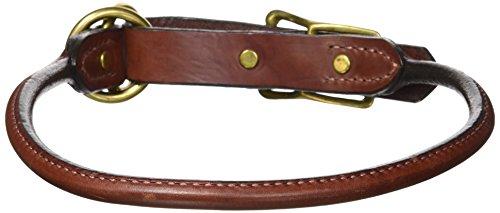 Mendota Pet Dog Training Collar, 1-Inch by 22-Inch, (Mendota Training Collar)