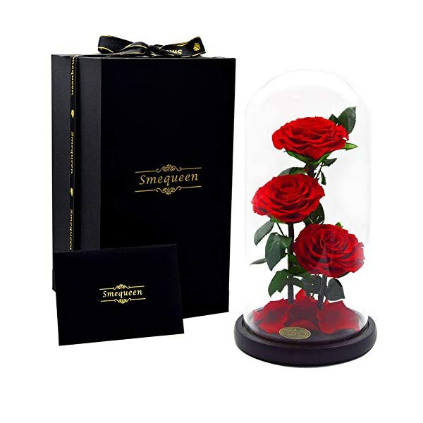 """Smequeen Preserved Rose Never Withered Roses Flower in 12.5""""x 6""""Glass Dome, Gift for Valentine's Day Anniversary Birthday (Red 2)"""