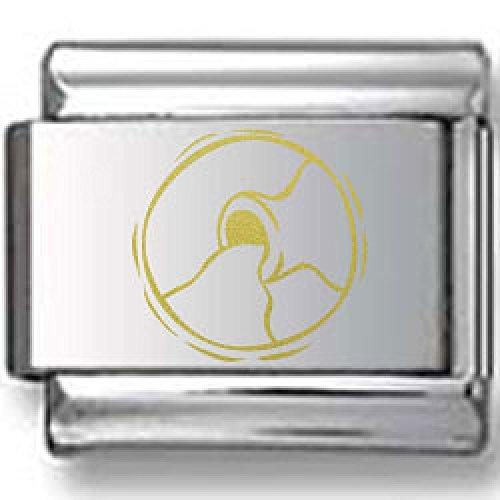Water Gold Laser Charm (Gold Aquarius Water Jug Laser Italian Charm)