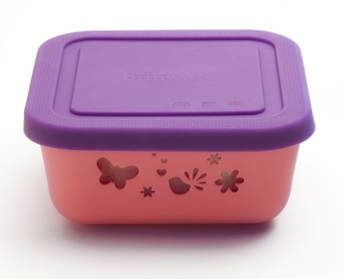 Brinware / Garden Party Glass Food Storage Container with Silicone Sleeve