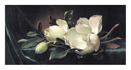 Global Gallery DP-118311-1224