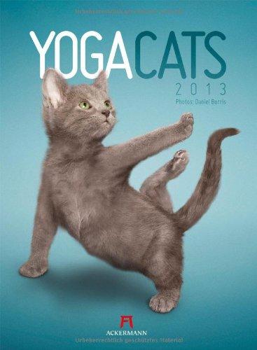 Yoga Cats 2013