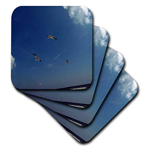 Trio Sea Gull (3dRose Dawn Gagnon Photography - Beach Scenes - Seagulls in flight, a trio flying against a vivid blue beach sky - set of 4 Ceramic Tile Coasters (cst_165598_3))
