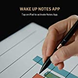 Adonit Note (Black) Palm Rejection Stylus & High